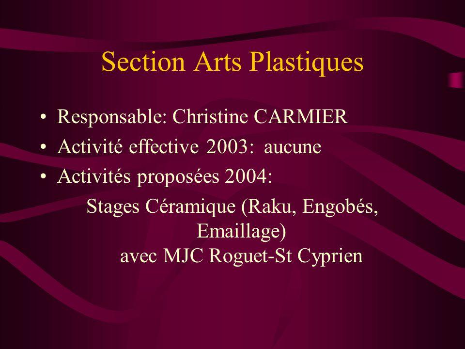 Section Arts Plastiques