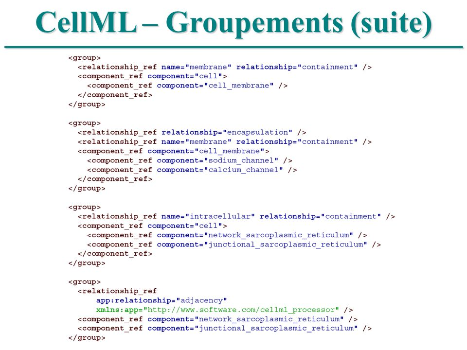 CellML – Groupements (suite)