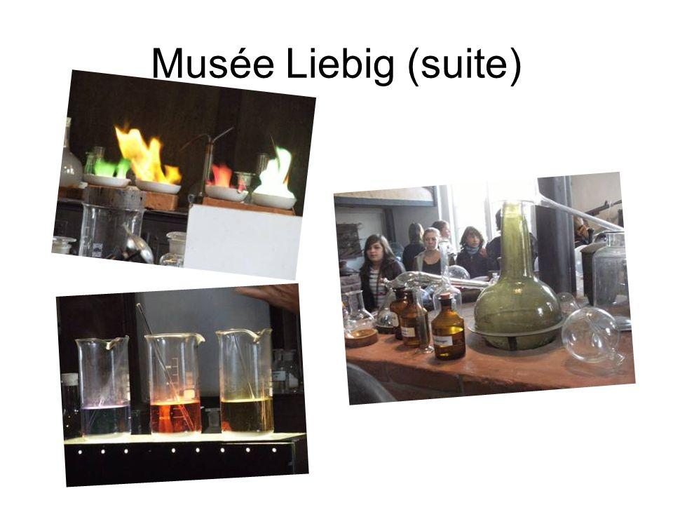 Musée Liebig (suite)