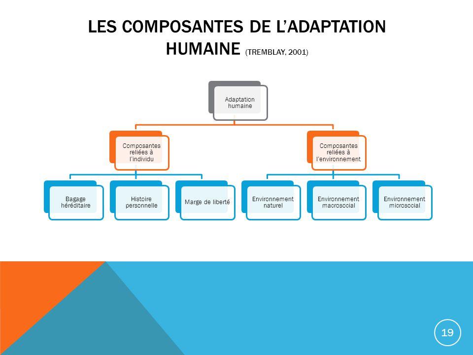 Les composantes de l'adaptation humaine (Tremblay, 2001)