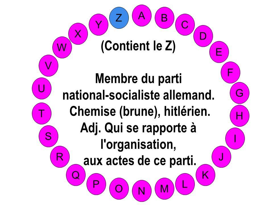 national-socialiste allemand. Chemise (brune), hitlérien.