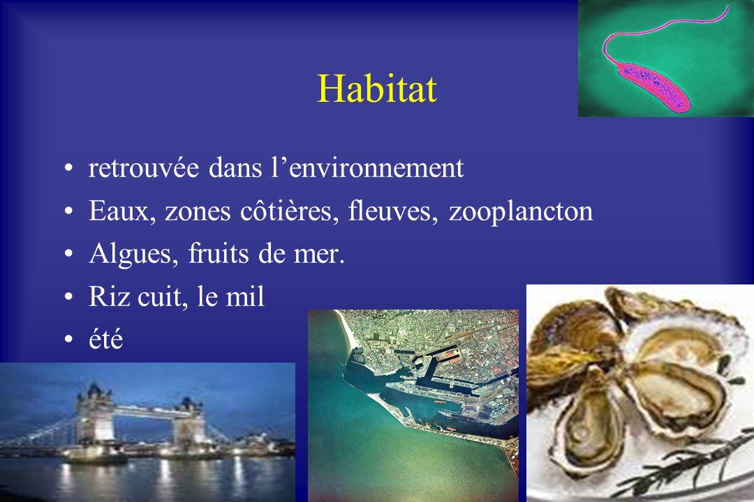 Habitat retrouvée dans l'environnement