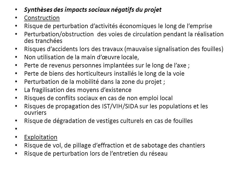 Synthèses des impacts sociaux négatifs du projet