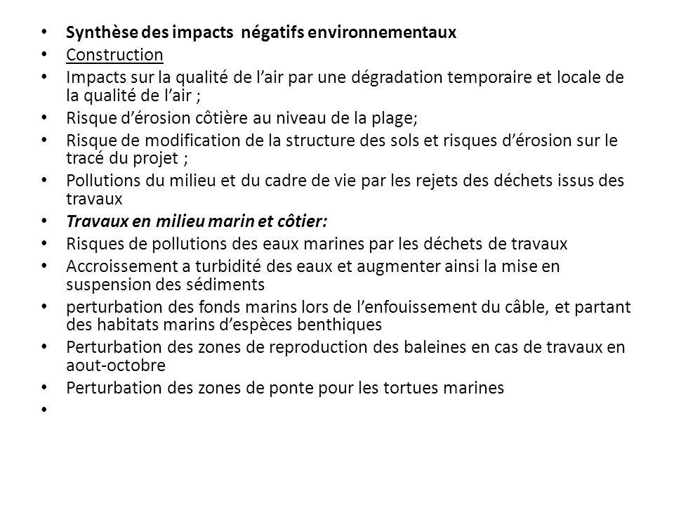 Synthèse des impacts négatifs environnementaux