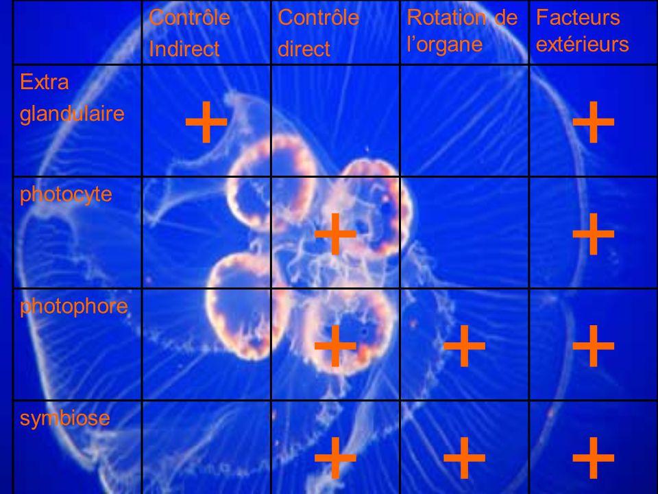 + Contrôle Indirect direct Rotation de l'organe Facteurs extérieurs