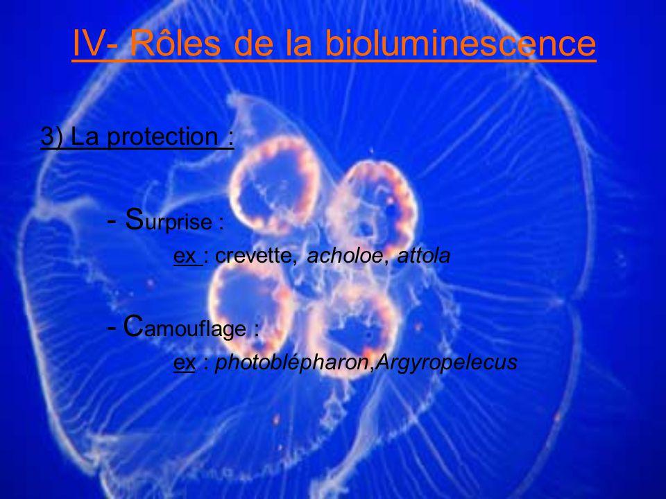 IV- Rôles de la bioluminescence