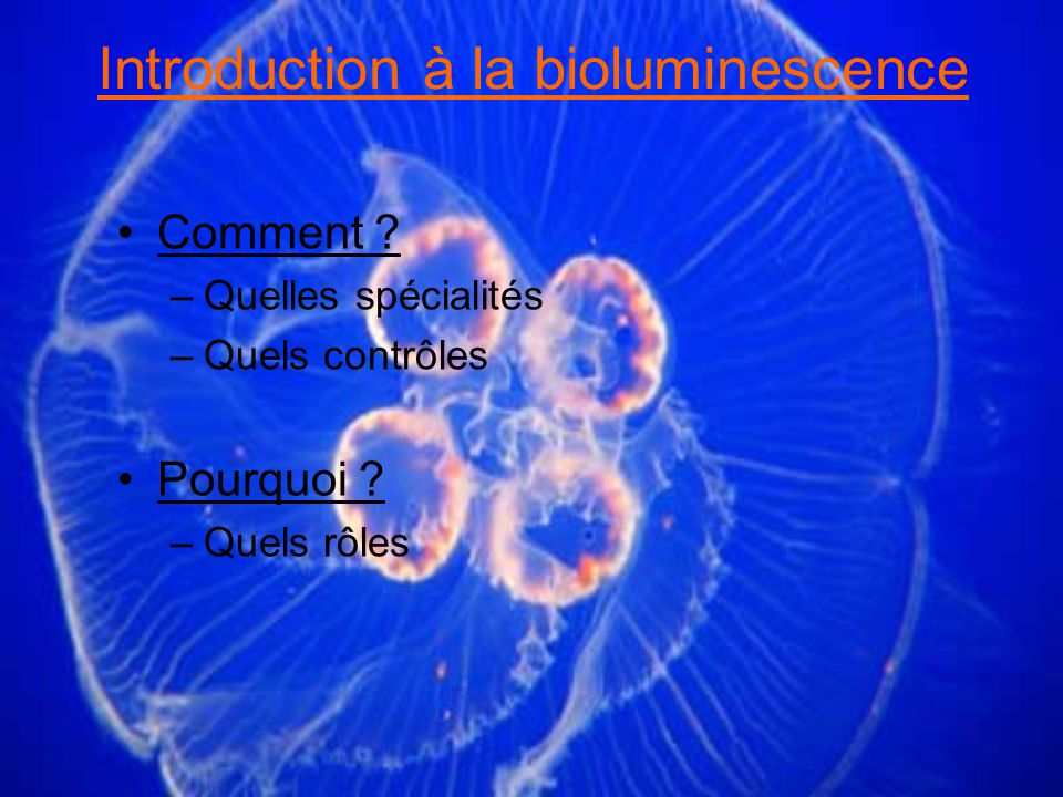 Introduction à la bioluminescence