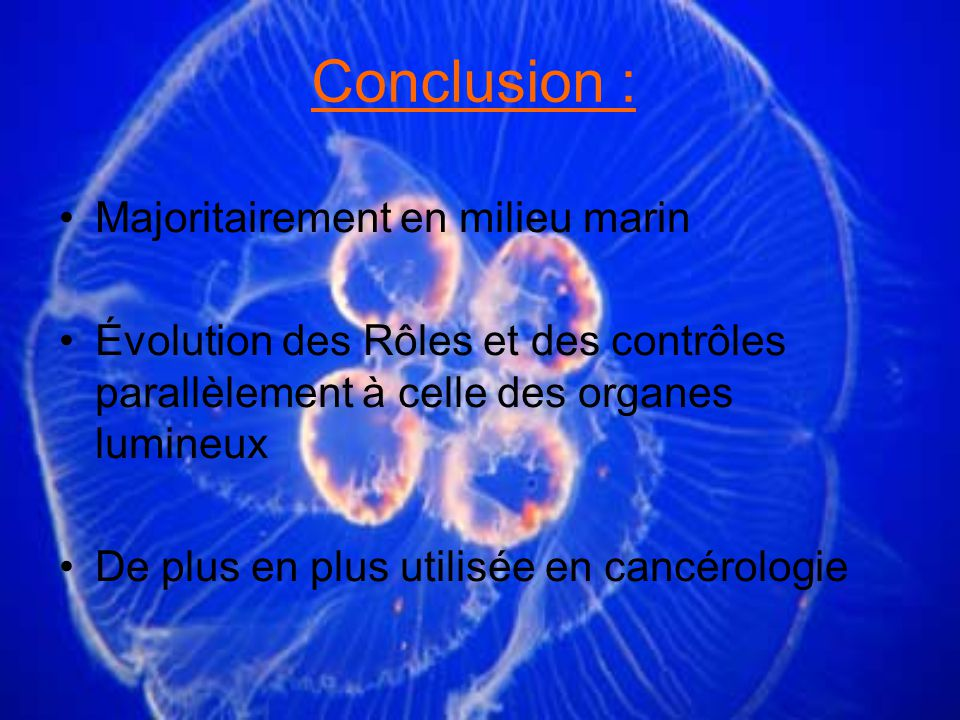 Conclusion : Majoritairement en milieu marin