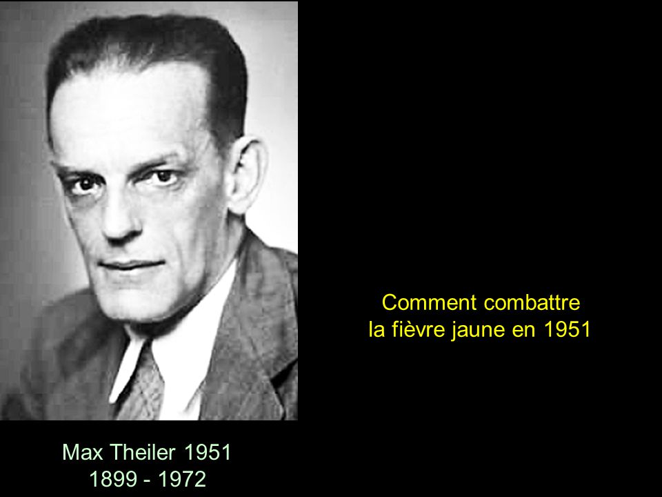 Comment combattre la fièvre jaune en 1951 Max Theiler 1951 1899 - 1972