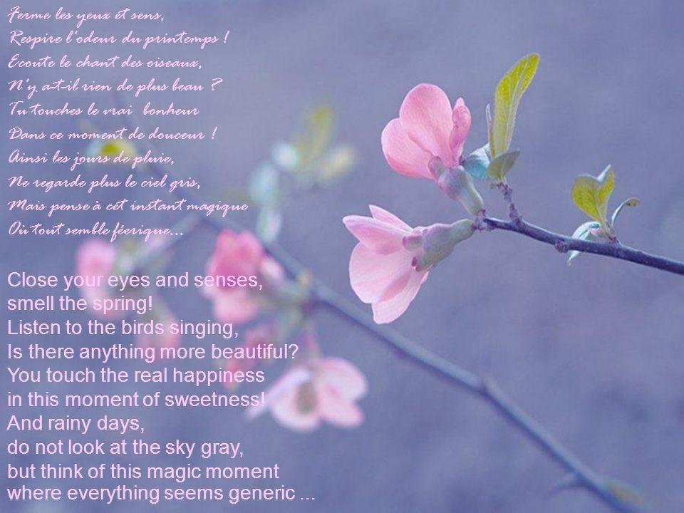 Ferme les yeux et sens, Respire l odeur du printemps