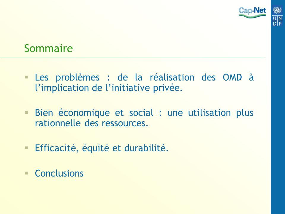 Sommaire Les problèmes : de la réalisation des OMD à l'implication de l'initiative privée.