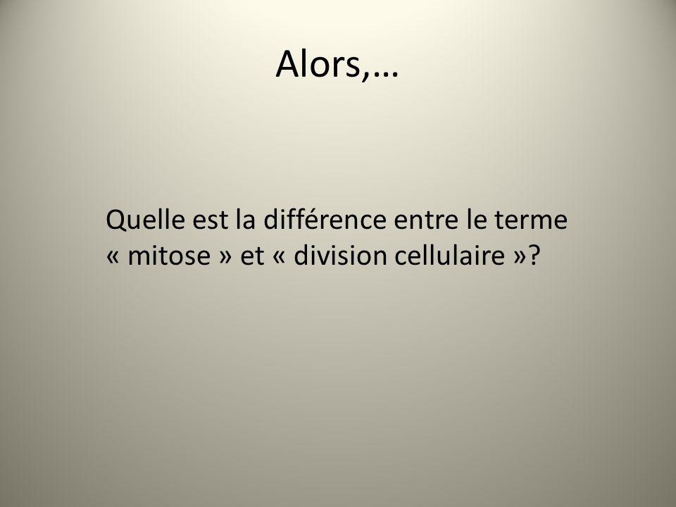 Alors,… Quelle est la différence entre le terme « mitose » et « division cellulaire »