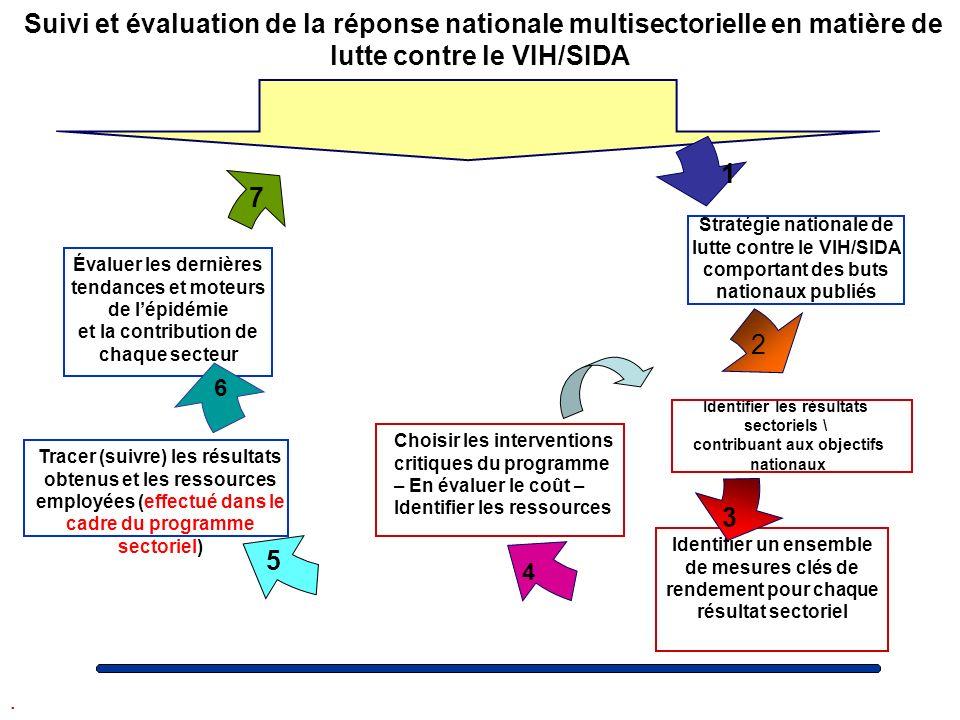 Suivi et évaluation de la réponse nationale multisectorielle en matière de lutte contre le VIH/SIDA