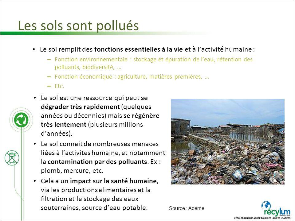Les sols sont pollués Le sol remplit des fonctions essentielles à la vie et à l'activité humaine :