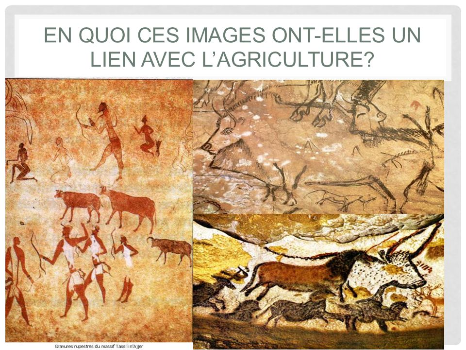 En quoi ces images ont-elles un lien avec l'agriculture