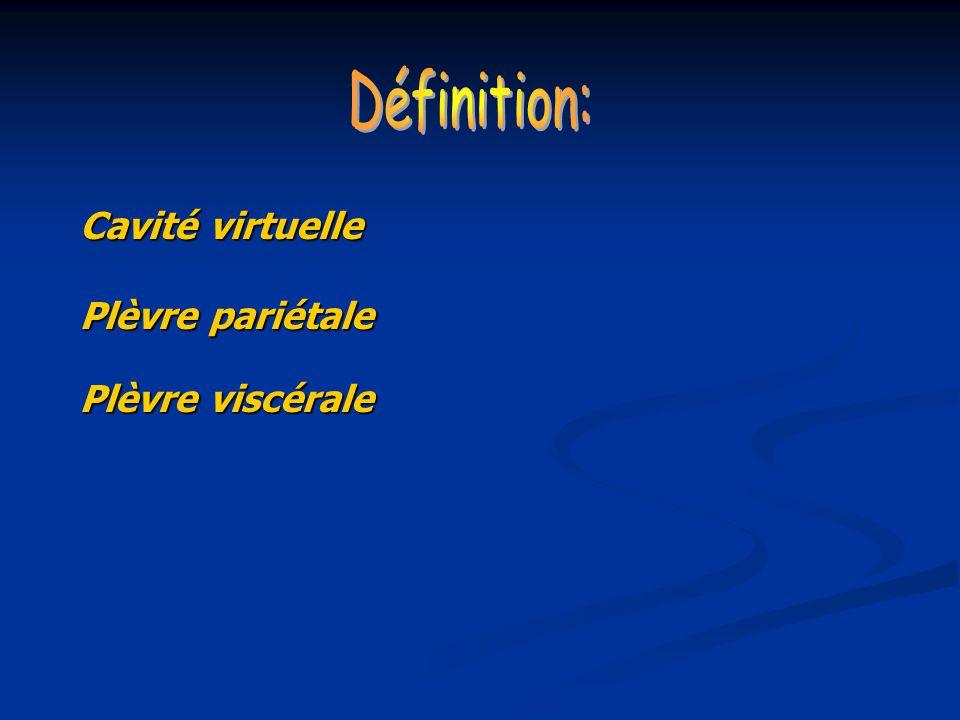 Définition: Cavité virtuelle Plèvre pariétale Plèvre viscérale