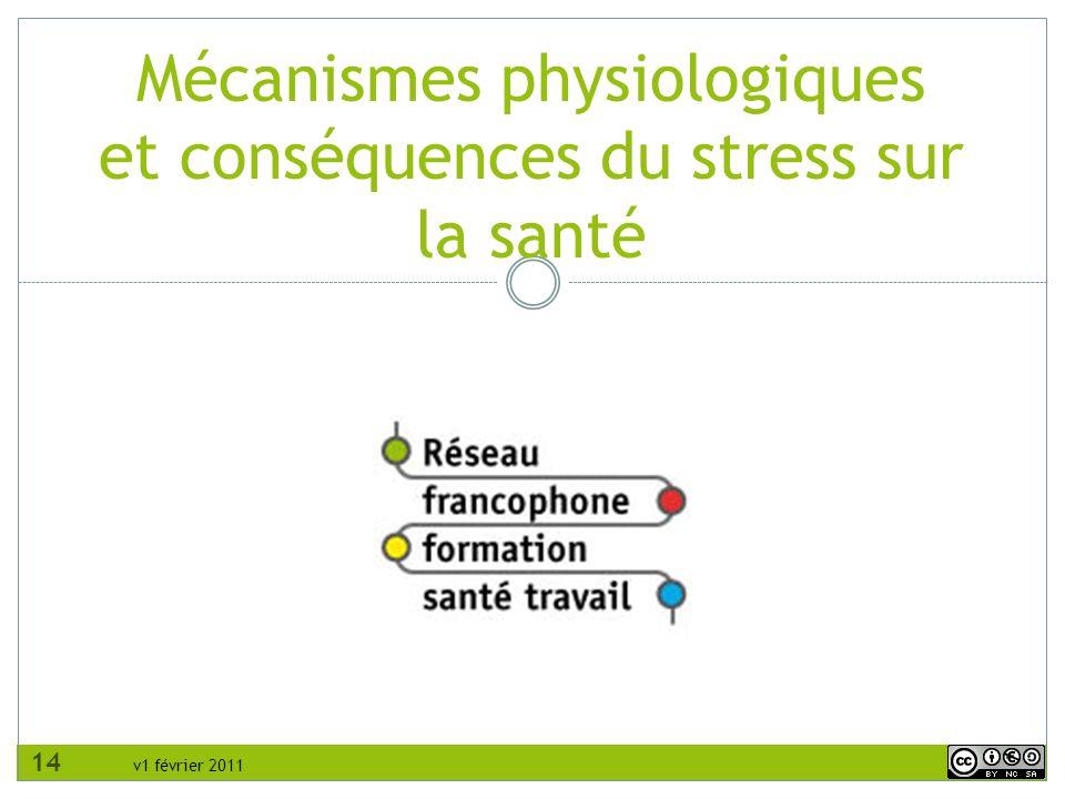 Mécanismes physiologiques et conséquences du stress sur la santé