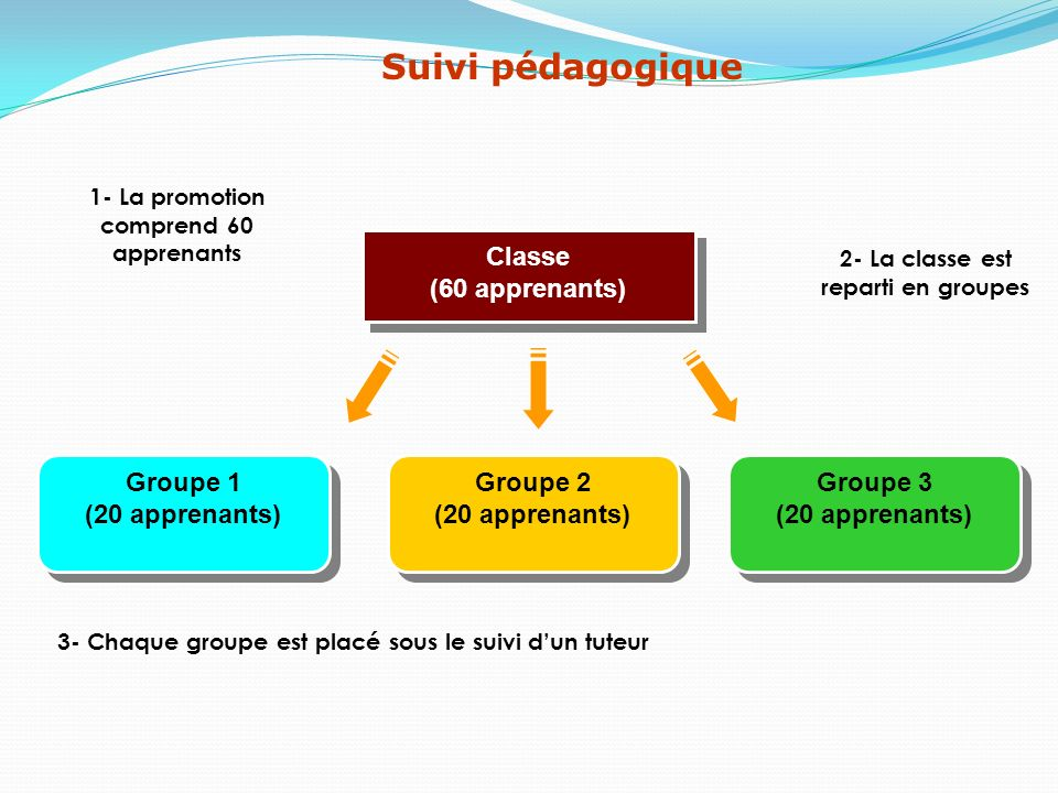 Suivi pédagogique Classe (60 apprenants) Groupe 1 (20 apprenants)