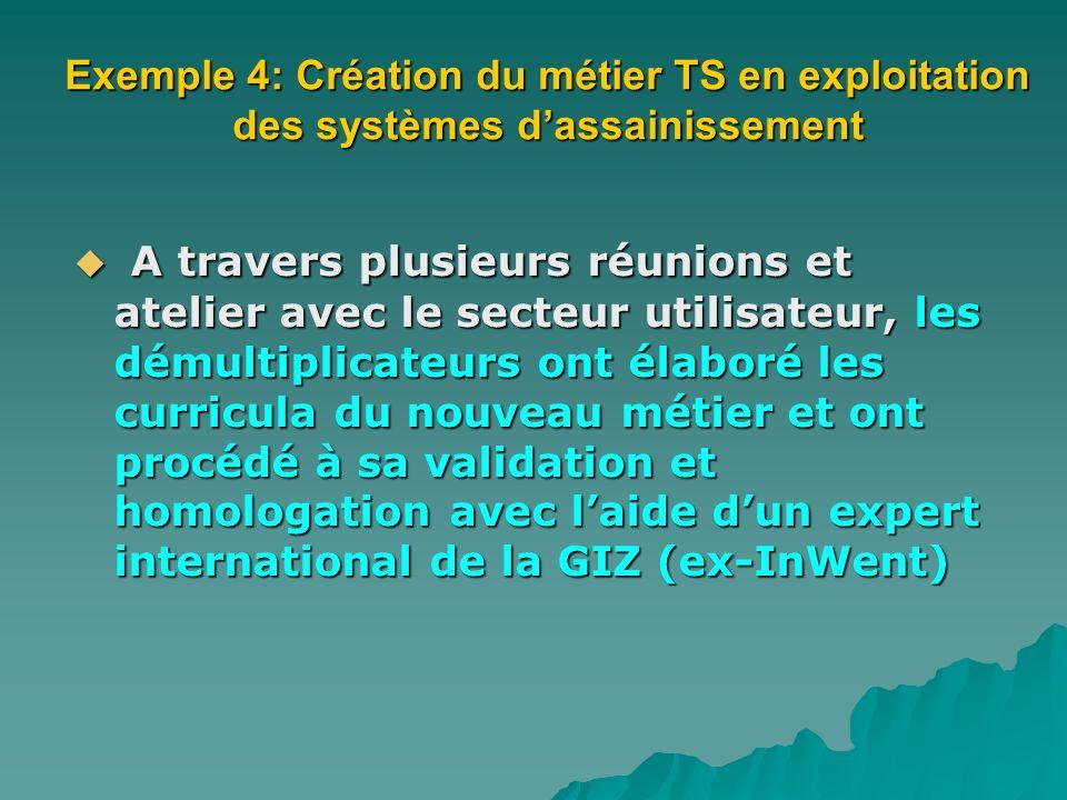 Exemple 4: Création du métier TS en exploitation des systèmes d'assainissement