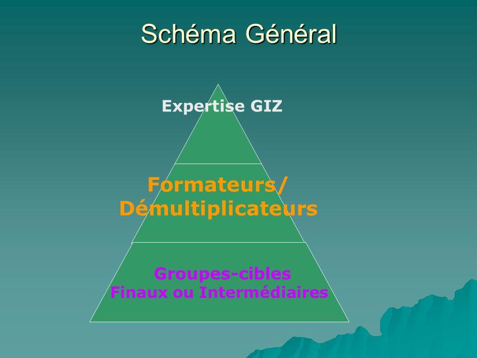 Schéma Général Expertise GIZ
