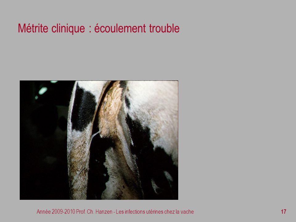 Métrite clinique : écoulement trouble