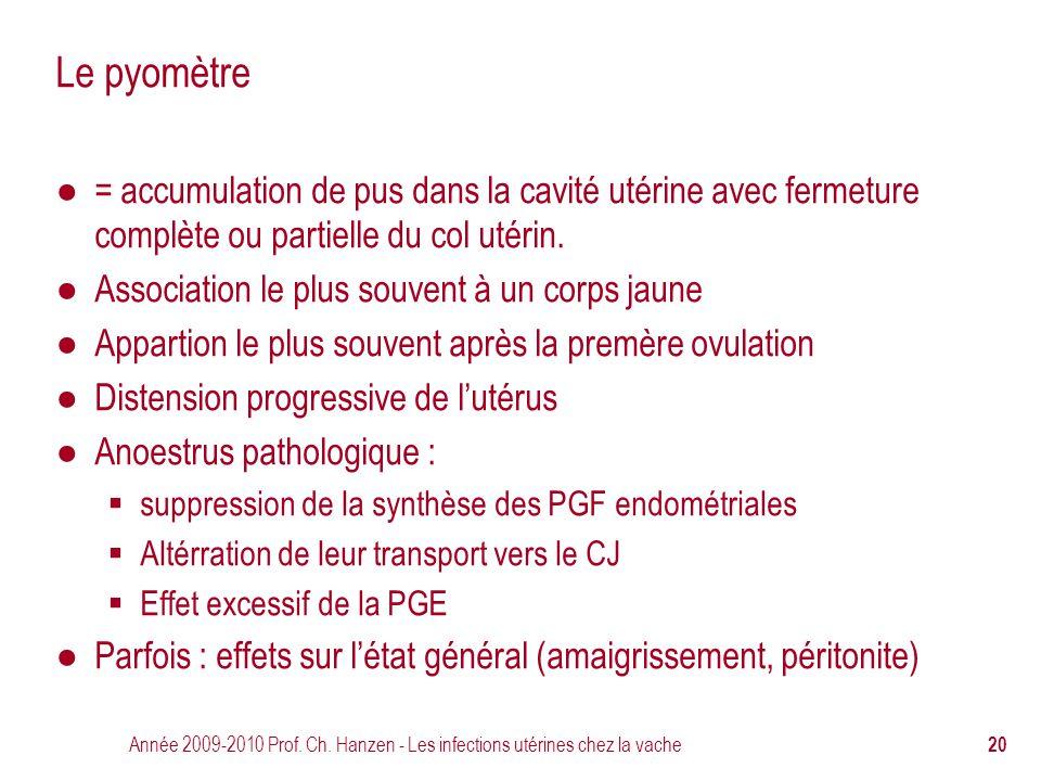 Le pyomètre = accumulation de pus dans la cavité utérine avec fermeture complète ou partielle du col utérin.