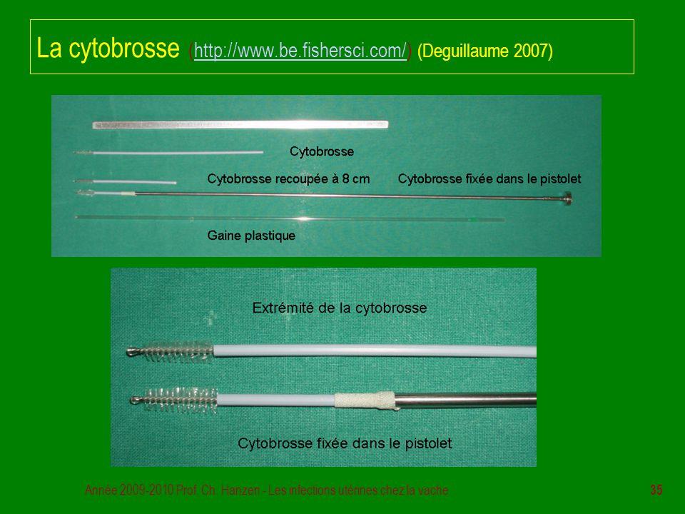 La cytobrosse (http://www.be.fishersci.com/) (Deguillaume 2007)