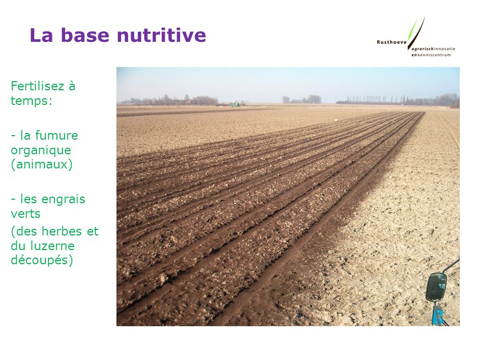 La base nutritive Fertilisez à temps: la fumure organique (animaux)
