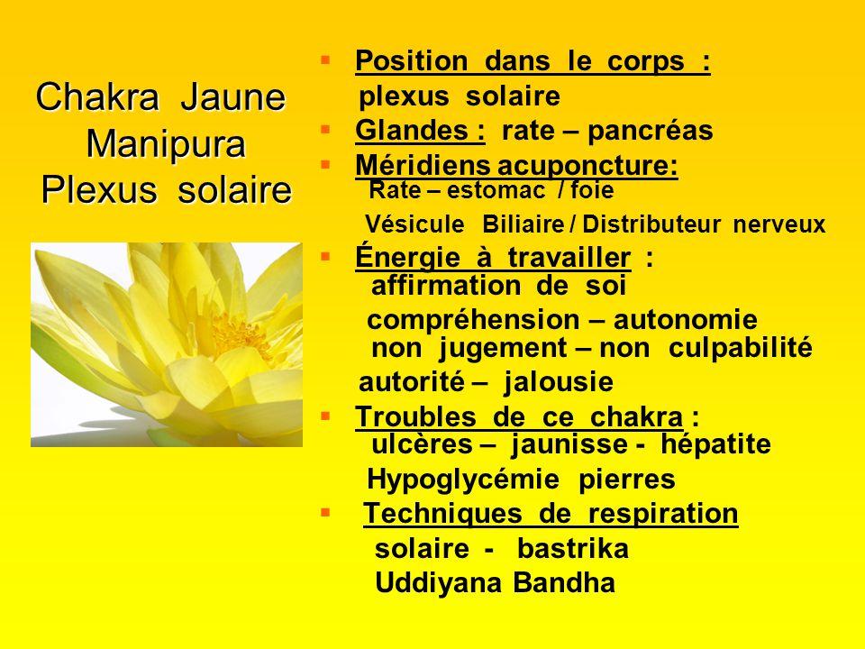 Chakra Jaune Manipura Plexus solaire