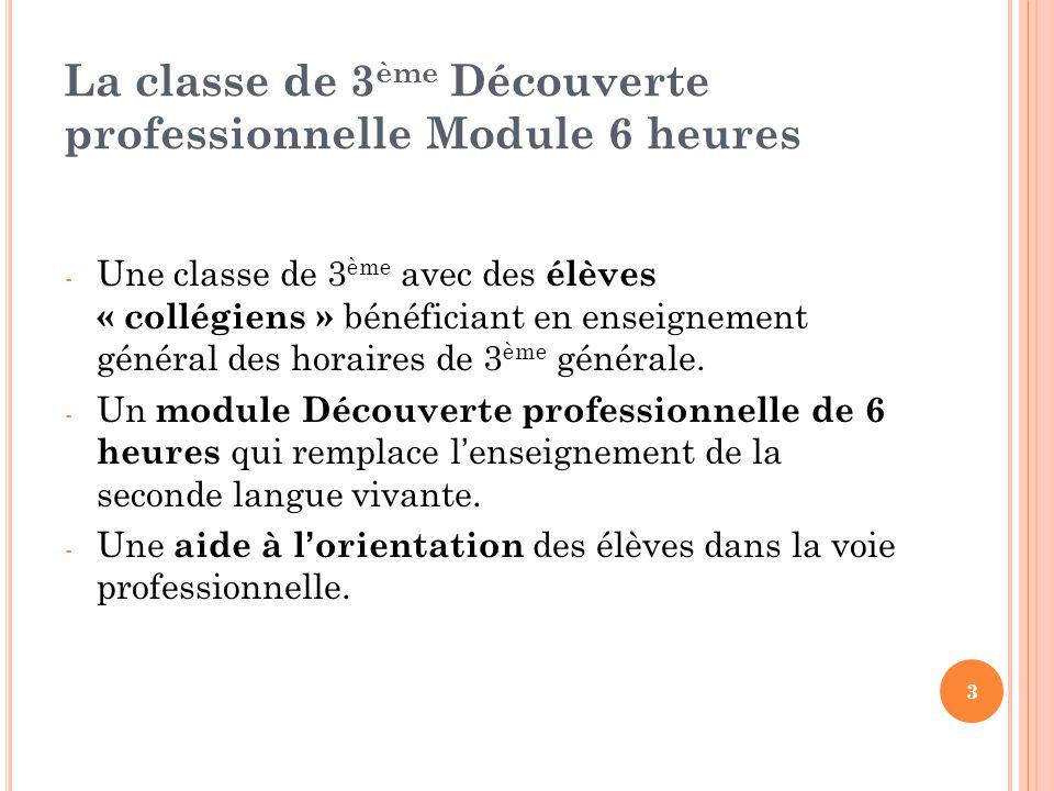 La classe de 3ème Découverte professionnelle Module 6 heures