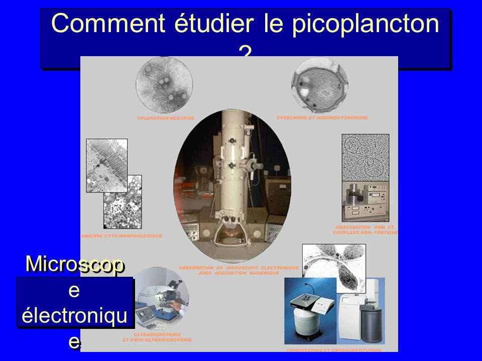 Comment étudier le picoplancton