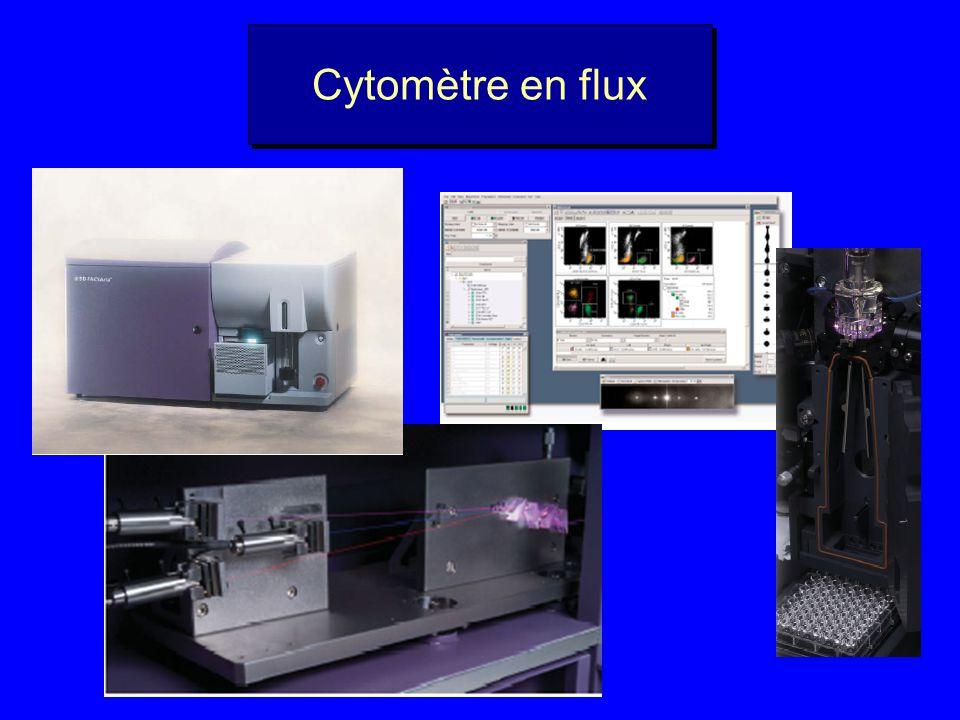 Cytomètre en flux