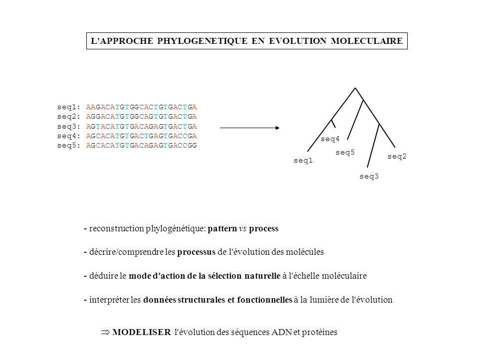 L APPROCHE PHYLOGENETIQUE EN EVOLUTION MOLECULAIRE