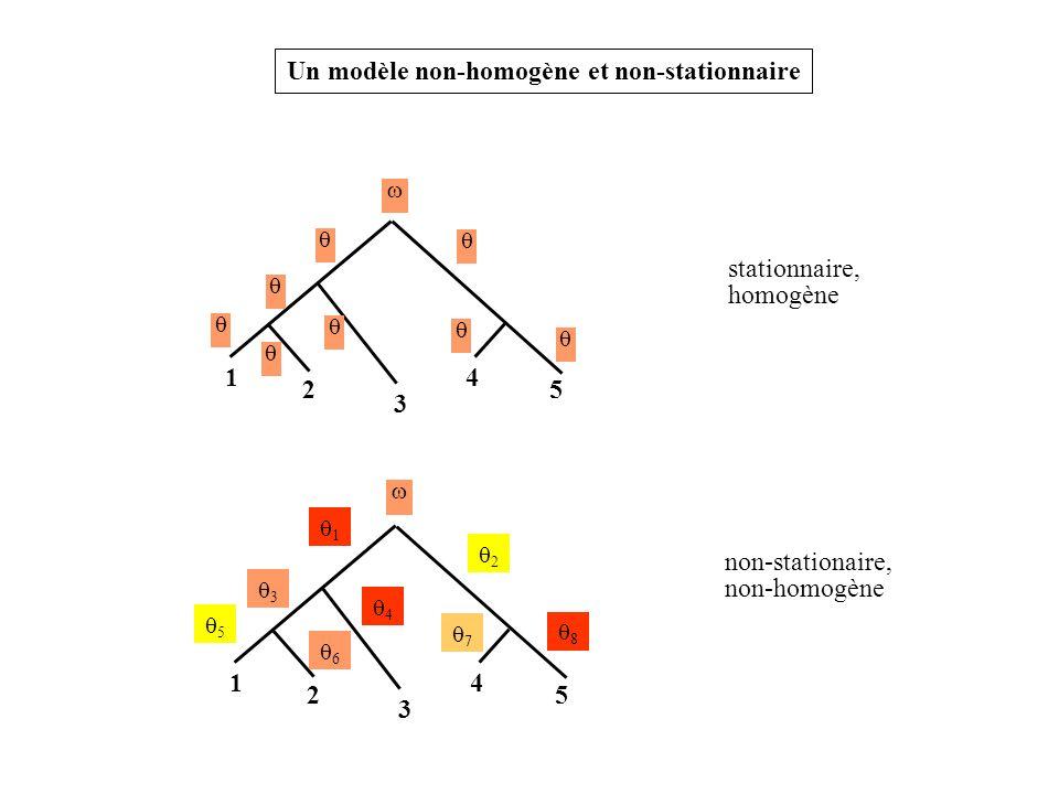 Un modèle non-homogène et non-stationnaire