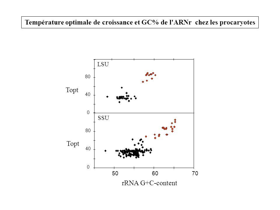 Température optimale de croissance et GC% de l ARNr chez les procaryotes