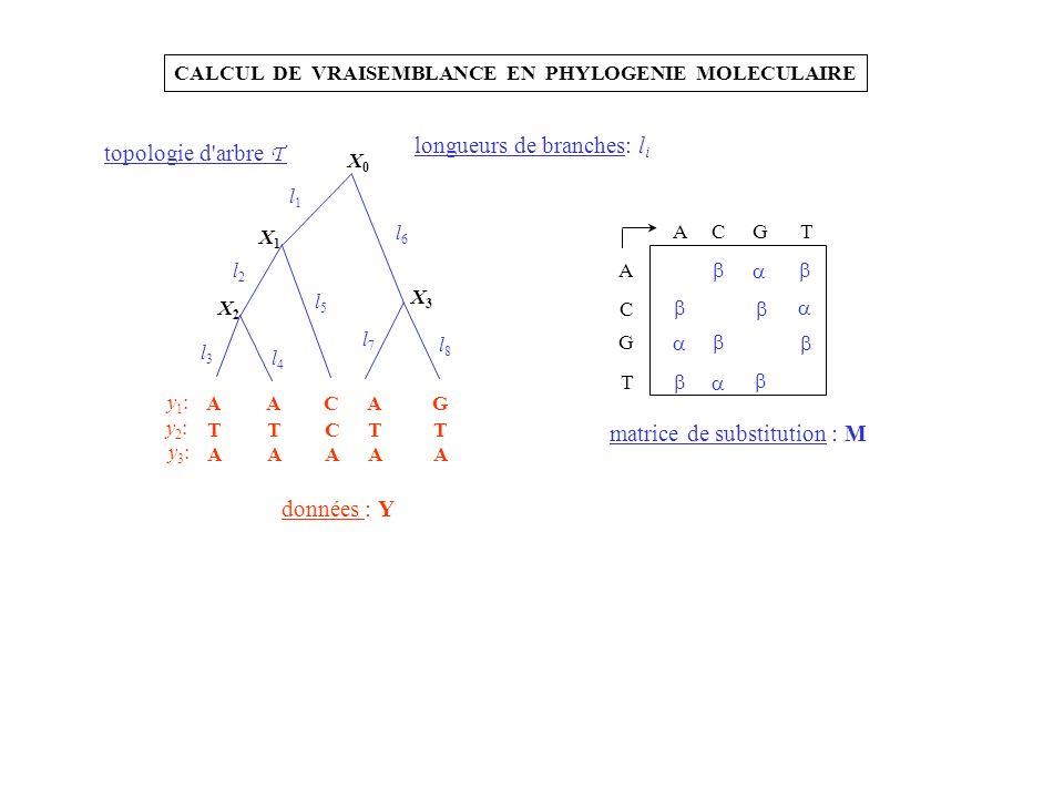 longueurs de branches: li topologie d arbre T