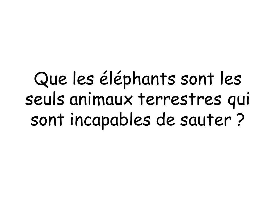 Que les éléphants sont les seuls animaux terrestres qui sont incapables de sauter