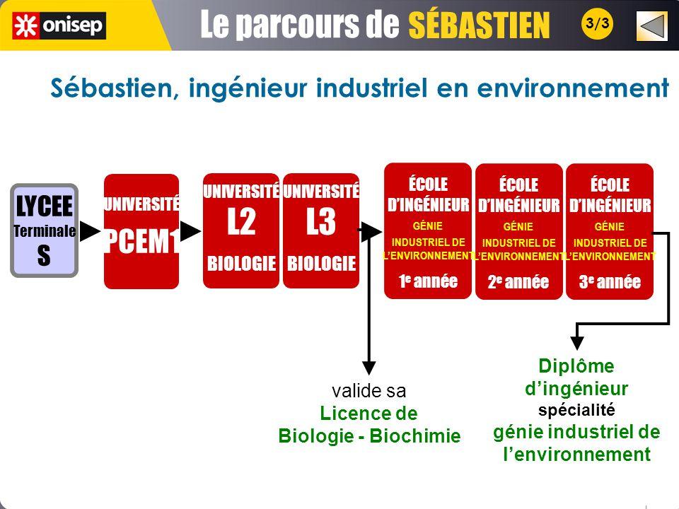 Le parcours de SÉBASTIEN L2 L3 PCEM1