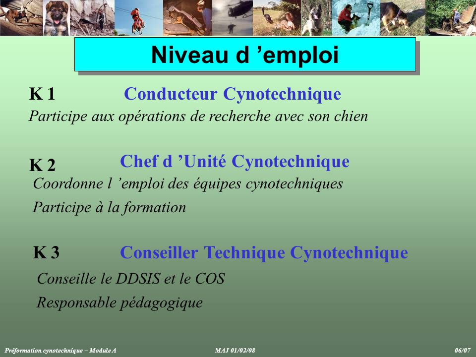 Niveau d 'emploi K 1 Conducteur Cynotechnique