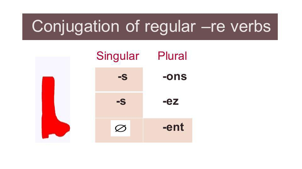 Conjugation of regular –re verbs
