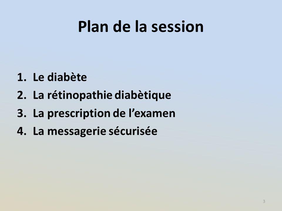 Plan de la session Le diabète La rétinopathie diabètique