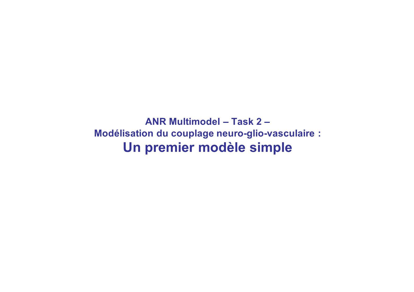 ANR Multimodel – Task 2 – Modélisation du couplage neuro-glio-vasculaire : Un premier modèle simple