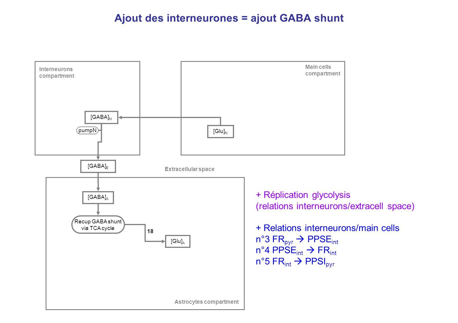 Ajout des interneurones = ajout GABA shunt