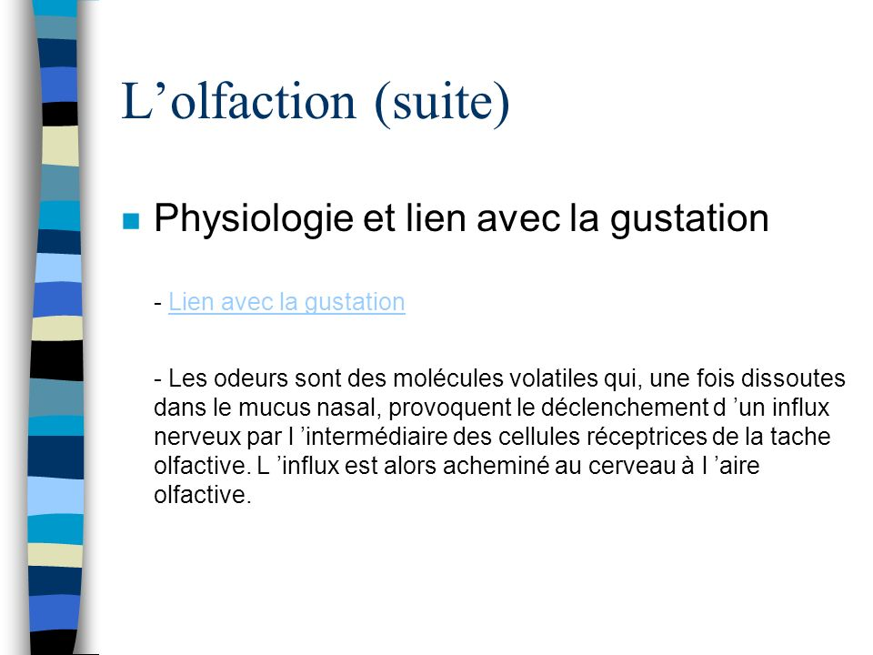 L'olfaction (suite)