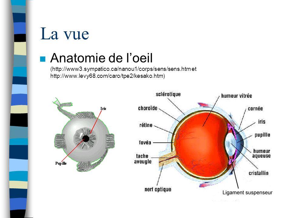 La vue Anatomie de l'oeil (http://www3.sympatico.ca/nanou1/corps/sens/sens.htm et http://www.levy68.com/caro/tpe2/kesako.htm)