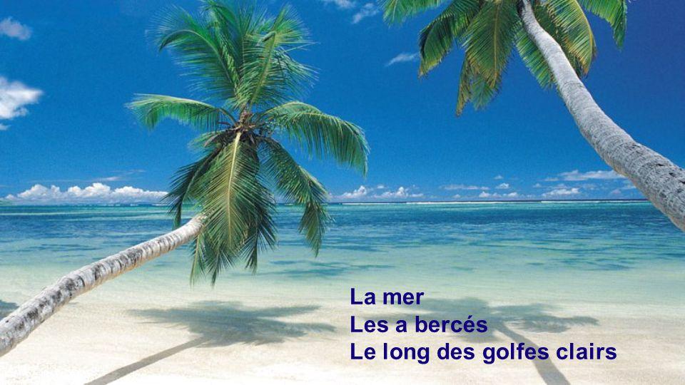 La mer Les a bercés Le long des golfes clairs