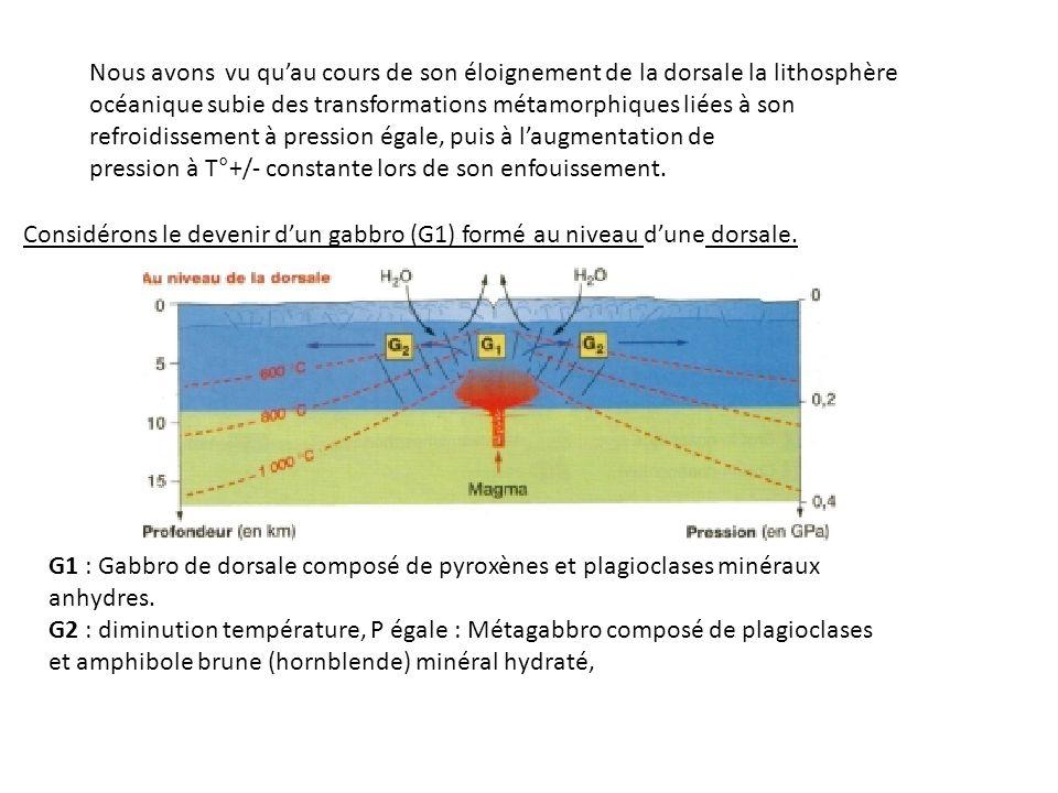 Nous avons vu qu'au cours de son éloignement de la dorsale la lithosphère océanique subie des transformations métamorphiques liées à son refroidissement à pression égale, puis à l'augmentation de