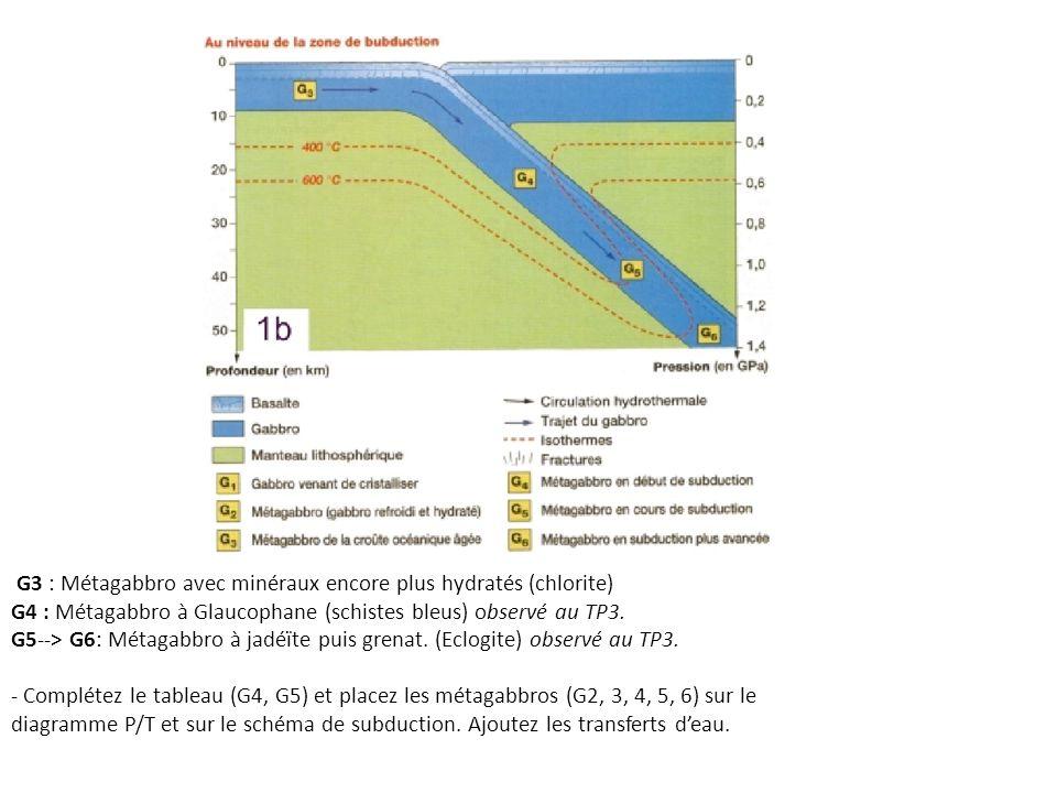 G3 : Métagabbro avec minéraux encore plus hydratés (chlorite)