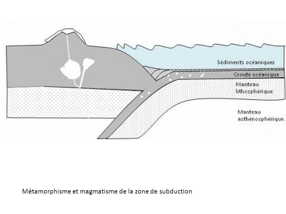 Métamorphisme et magmatisme de la zone de subduction