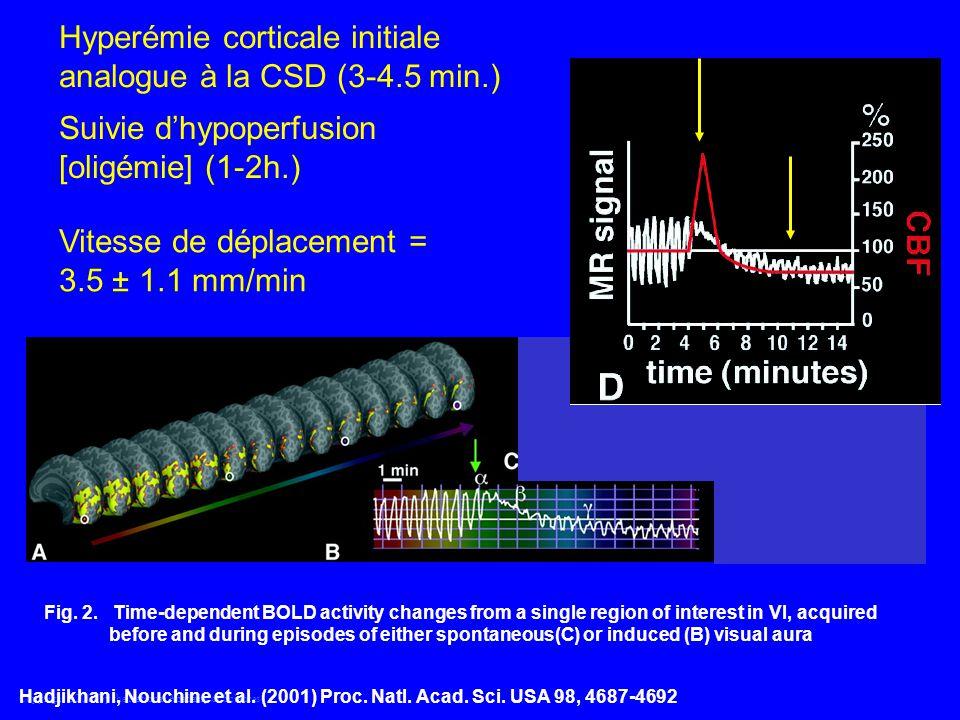 Hyperémie corticale initiale analogue à la CSD (3-4.5 min.)